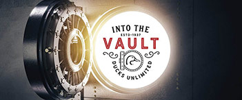 Into the Vault Auction