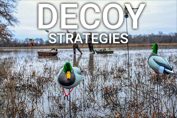 DU Newsletter October 2018: Decoy Strategies