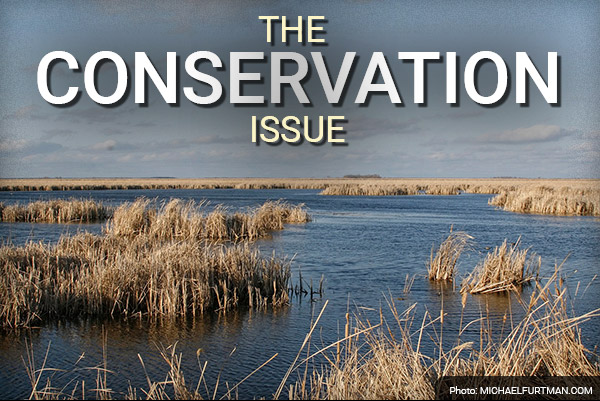 DU Newsletter: The Conservation Issue (Apr. 2019)