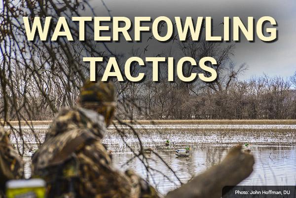 DU Newsletter: Waterfowling Tactics (Dec. 2019)
