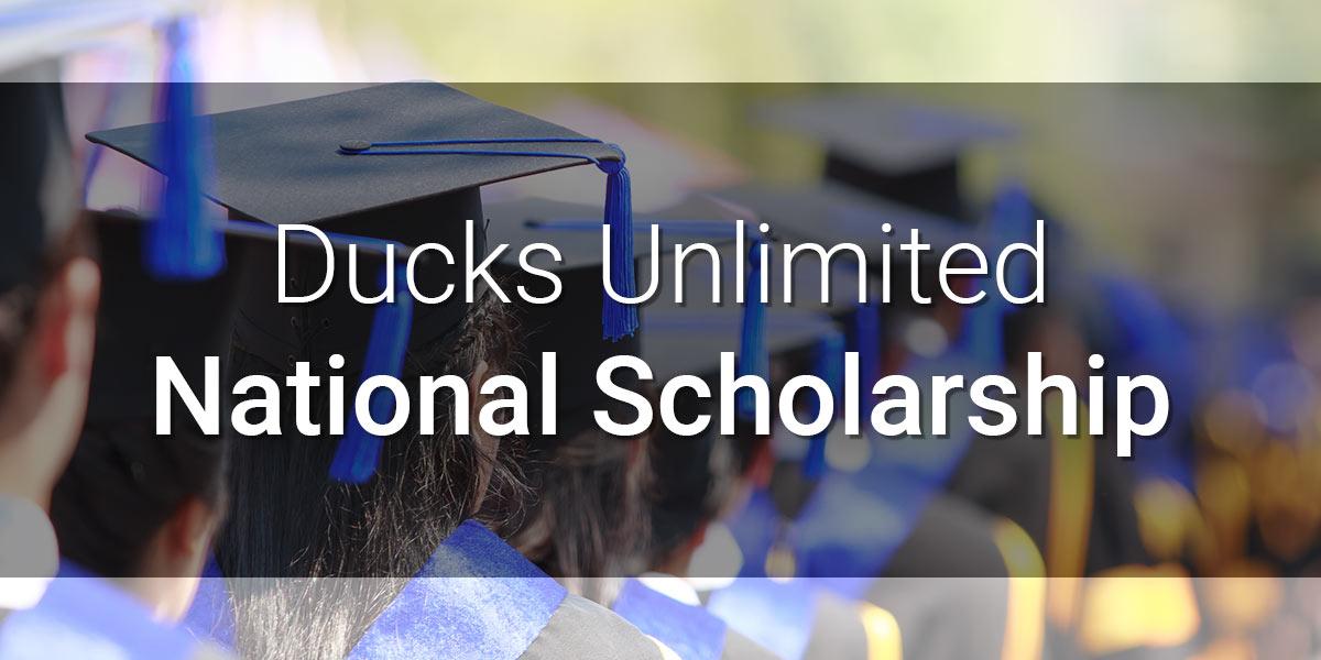 DU National Scholarship