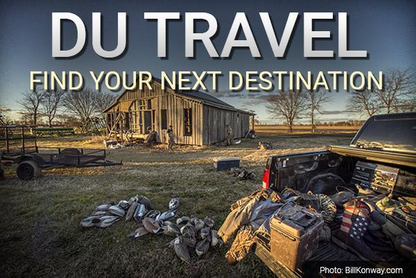 DU Newsletter: The Travel Issue (Mar. 2019)