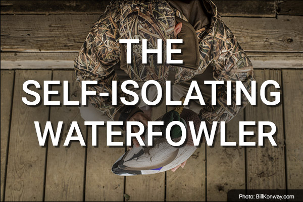 DU Newsletter: The Self-Isolating Waterfowler (Apr. 2020)