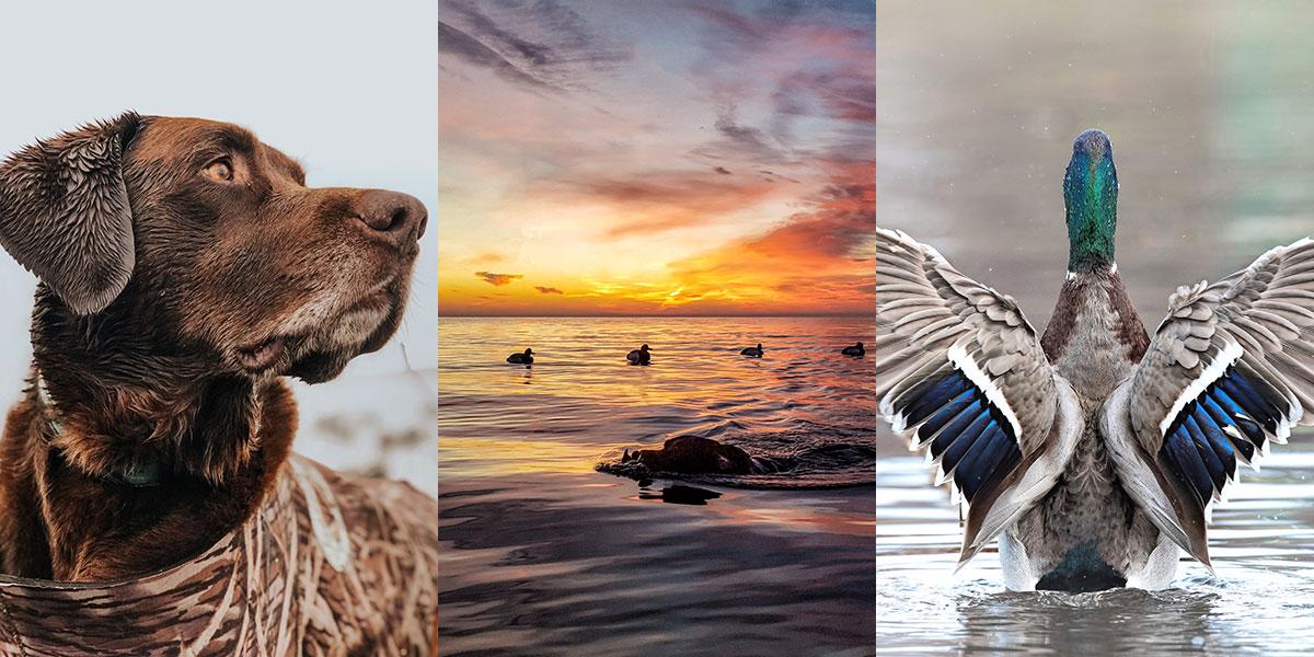 DU 2021 Calendar Photo Contest