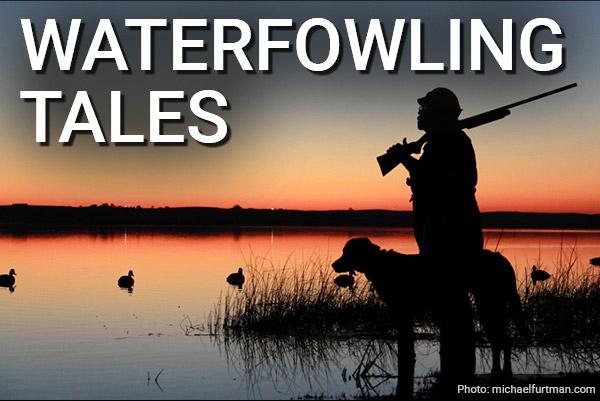 DU Newsletter: Waterfowling Tales (Nov. 2020)