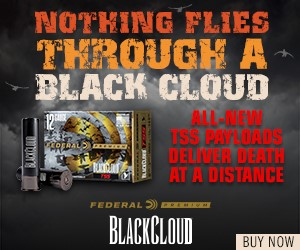 Federal Premium Black Cloud