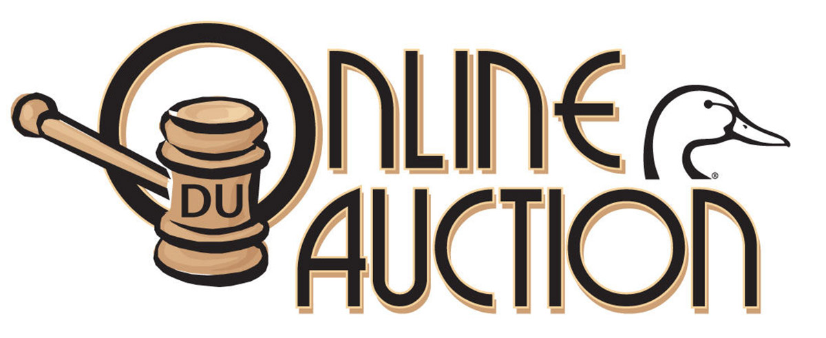 DU Online Auction