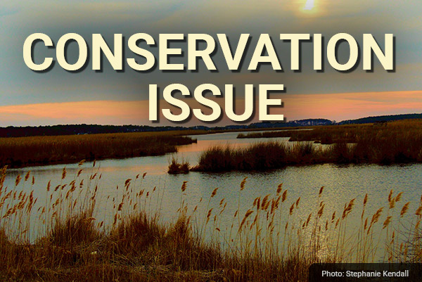 DU Newsletter: The Conservation Issue (Apr. 2021)