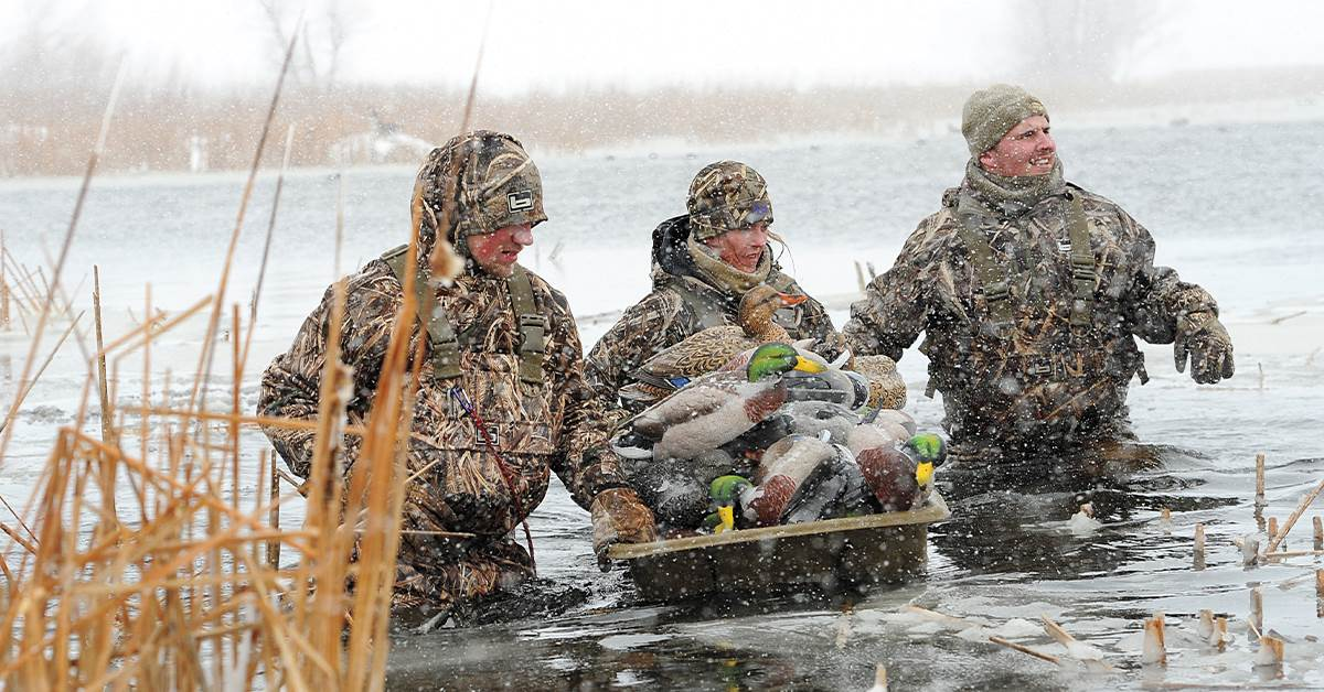 Hunting the Freeze Line