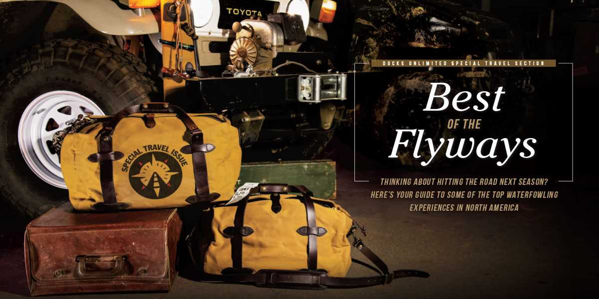 Best of the Flyways